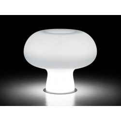 Vaso Boyo Light Plust Collection